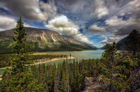 Бесплатные фото Озеро Беннетт,Юкон,Канада