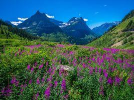 Фото бесплатно природа, вашингтон, США