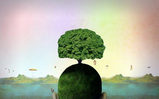 Бесплатные фото абстрактные,психоделические,природа,голова,художественные работы,цифровое искусство,пейзаж