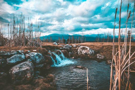 Бесплатные фото поток,вода,камни,трава,stream,water,stones,grass