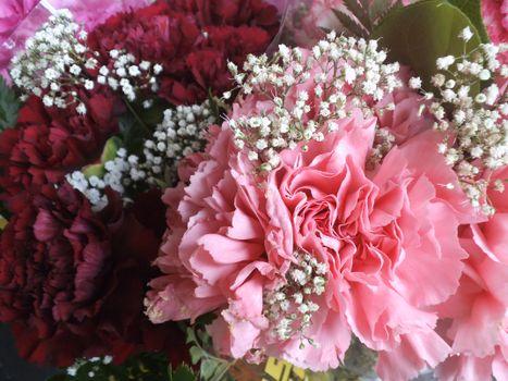 Фото бесплатно цветок, роза, срезанные цветы