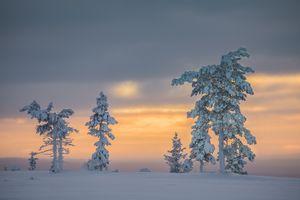 Фото бесплатно пейзаж, лапландия, зима