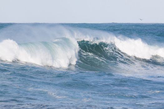 Photo free water, blue, surf