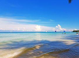 Обои тропики, море, яхты