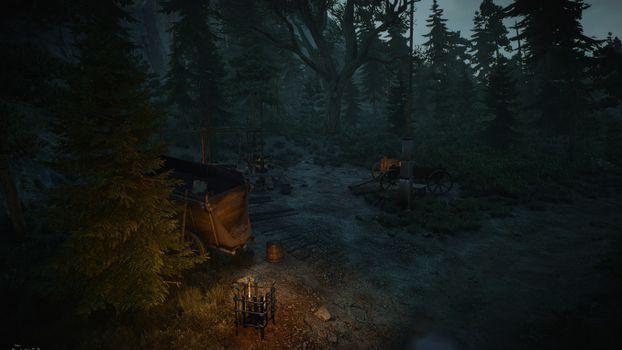 Фото бесплатно лес, ночь, колдунья 3 дикая охота