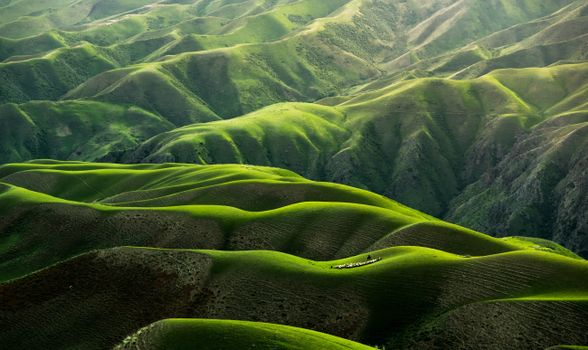 Photo free hills, picturesque, aerial view