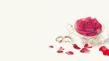 Бесплатные фото праздник,свадьба,кольца