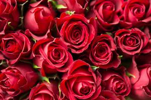 Фото бесплатно букет цветов, цветок, лепестки