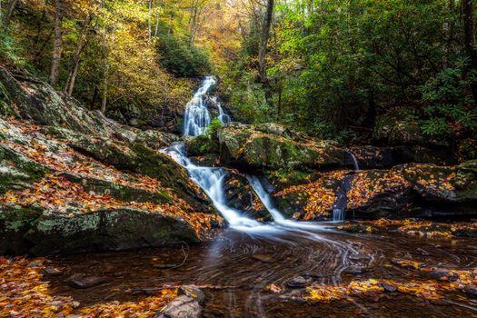 Фото бесплатно Грейт-Смоки-Парк, пейзаж, осень