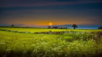 Фото бесплатно дом, закат, деревья
