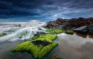 Скалистый берег · бесплатное фото