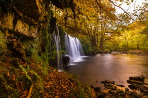 Бесплатные фото осень, водопад, лес, деревья, пейзаж