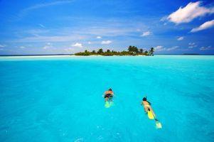 Бесплатные фото тропики,море,остров,пляж,дайвинг