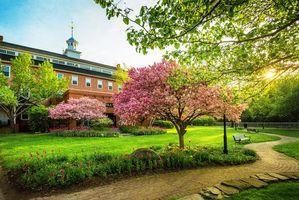 Обои весна, сад, парк, клумды, деревья, цветы, цветение, закат, дорога, лавочки, пейзаж, Belknap Mill