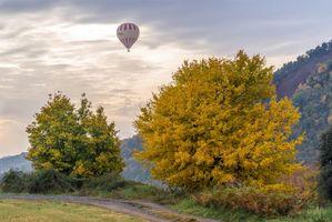 Фото бесплатно осень, закат, поле, деревья, дорога, воздушный шар, пейзаж