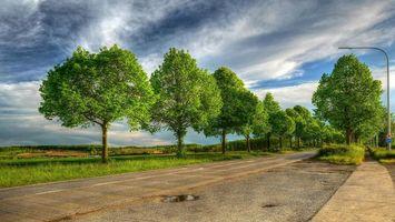 Фото бесплатно деревья, пейзаж, поля