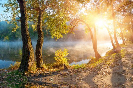 Заставки реки, солнечный свет, осень
