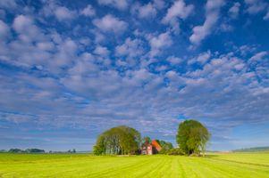 Фото бесплатно поле, деревья, домик