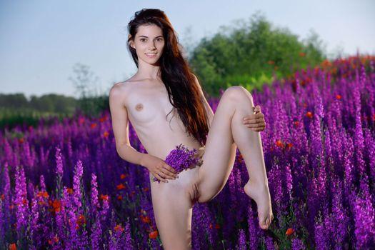 Заставки Aleksandrina, эротика, голая девушка