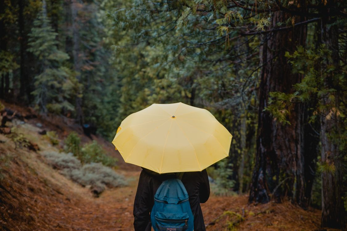 Фото бесплатно зонт, лицо, прогулка, umbrella, person, walk, настроения