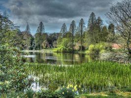Фото бесплатно Weston park, England, водоём, парк, деревья, пейзаж