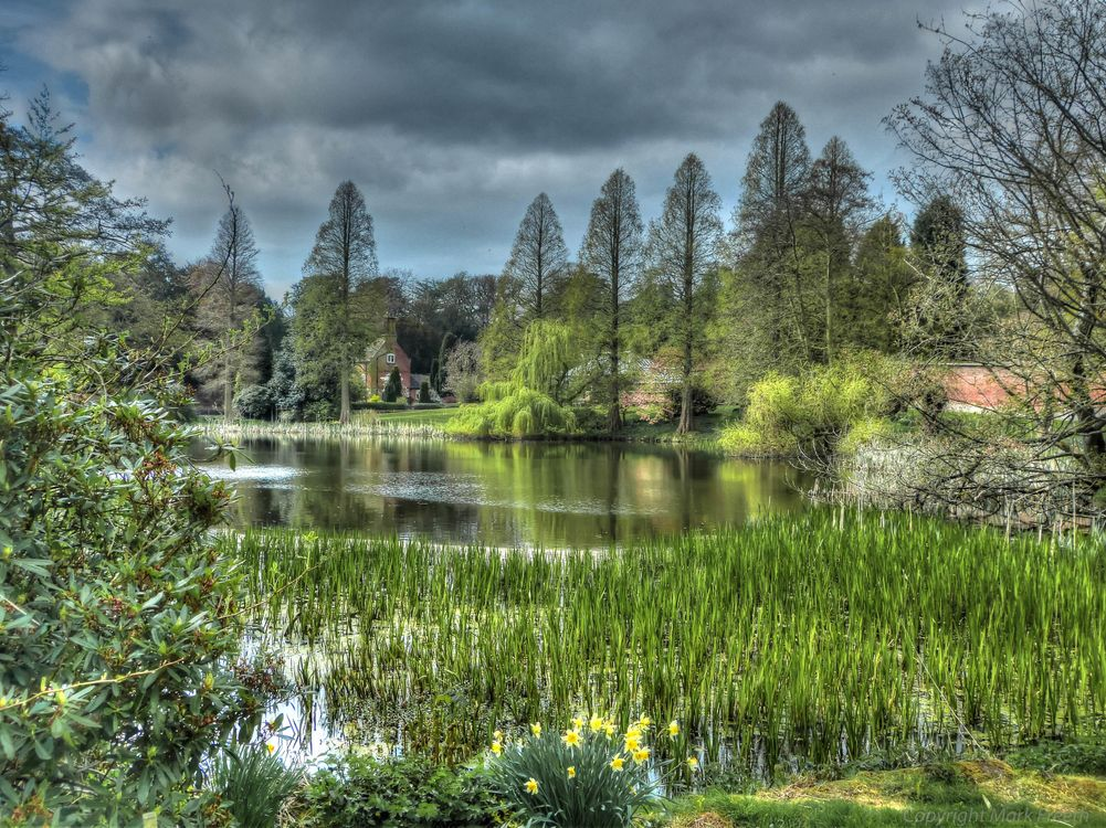 Free photo Weston park, England, pond - to desktop
