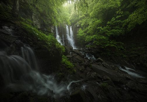 Free forest, waterfall photo on your phone