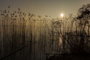 Фото бесплатно восход солнца, Бранденбург, озеро