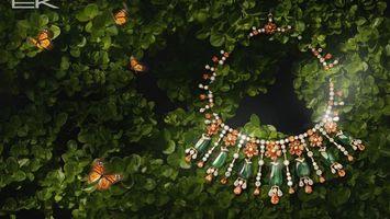 Бесплатные фото zelen,listya,babochki,kole