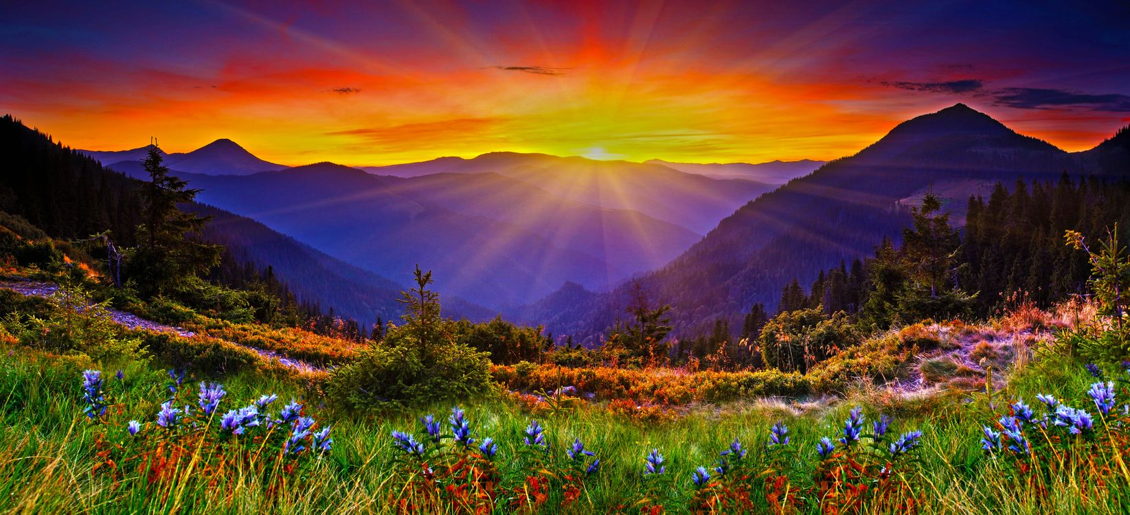 Фото бесплатно закат, горы, деревья, цветы, панорама, пейзаж, пейзажи