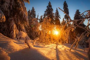 Заставки зима,закат,снег,лес,деревья,сугробы,пейзаж