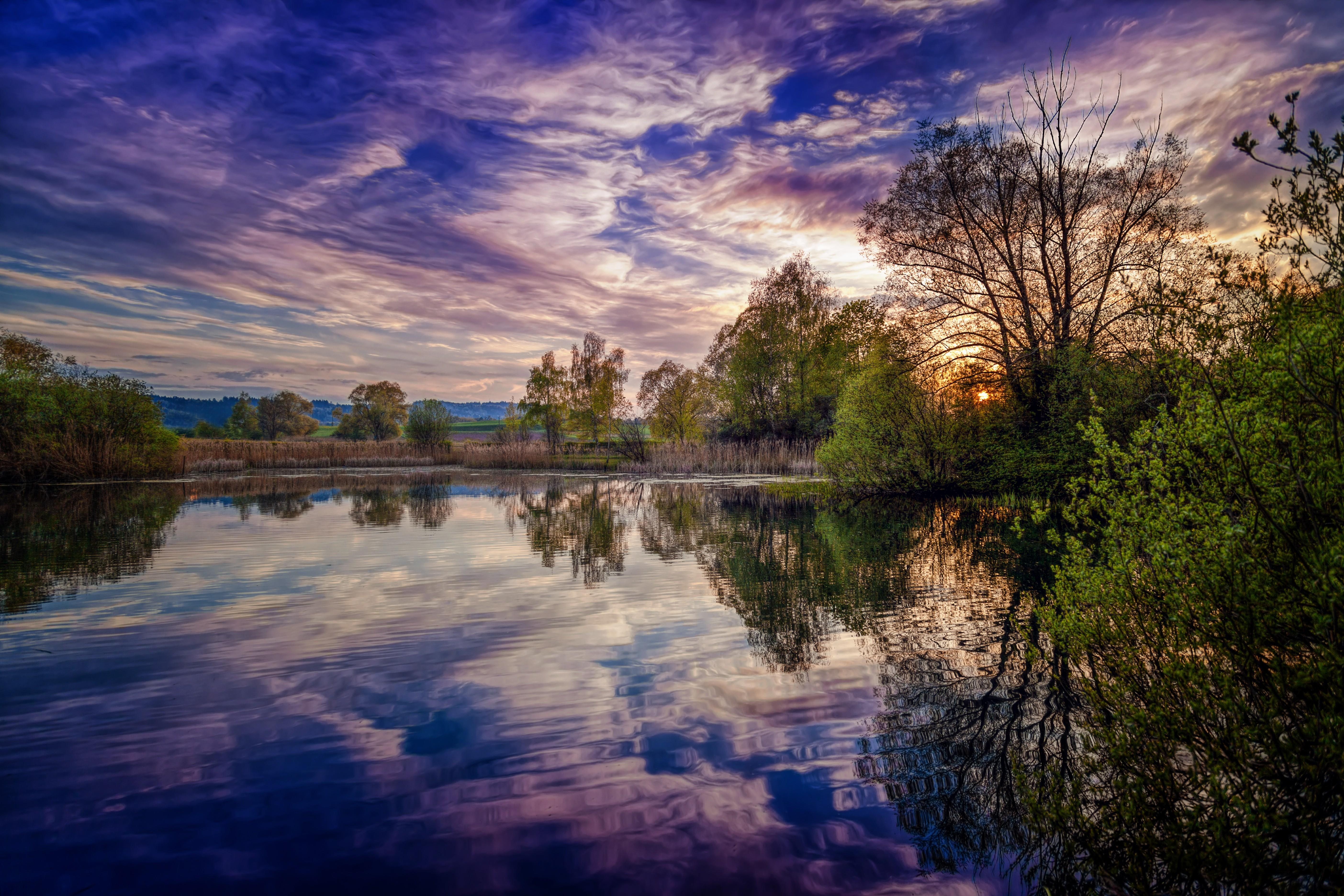 Обои озеро, закат, деревья, небо