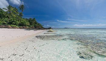 Заставки Сейшелы, пальмы, остров