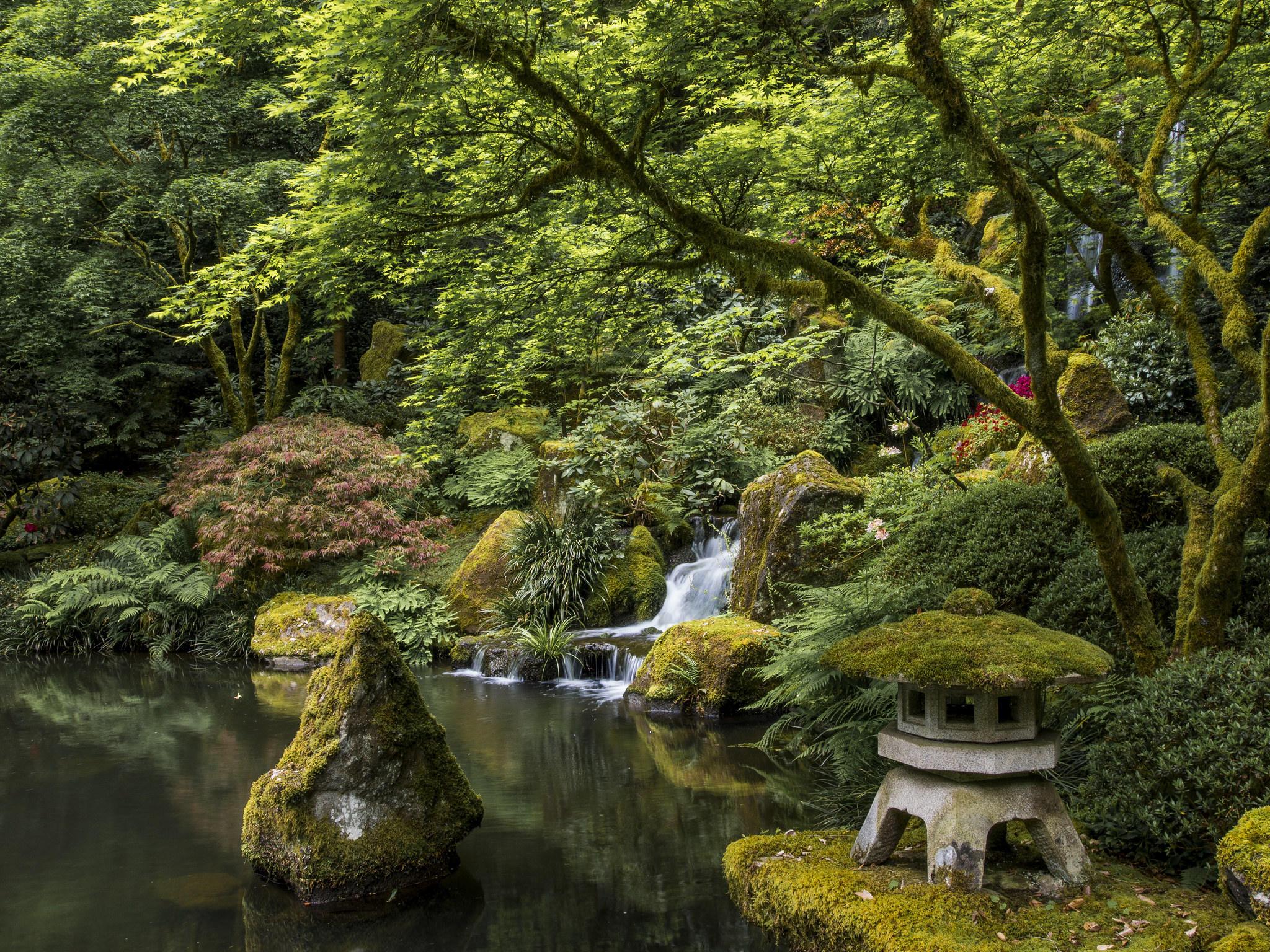 Обои на рабочий стол японский сад