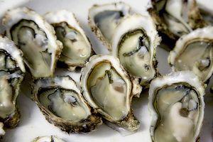 Фото бесплатно еда, морепродукты, рыбы