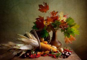 Бесплатные фото натюрморт,стол,ягоды,рябина,ваза,листья