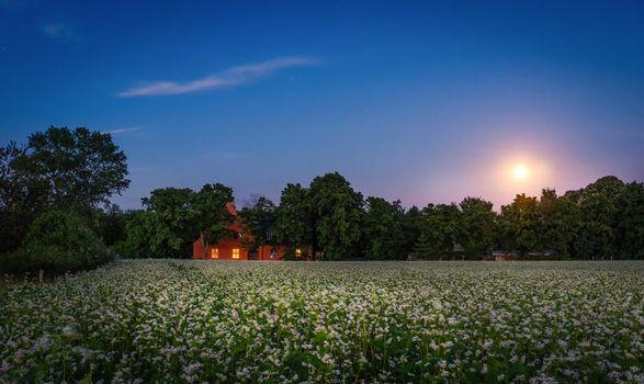 Фото бесплатно закат, поле, домики
