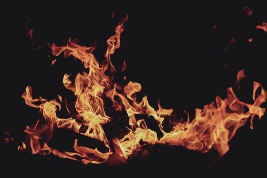 Фото костер, пламя без регистрации