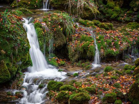 Заставки природа, осень, листья