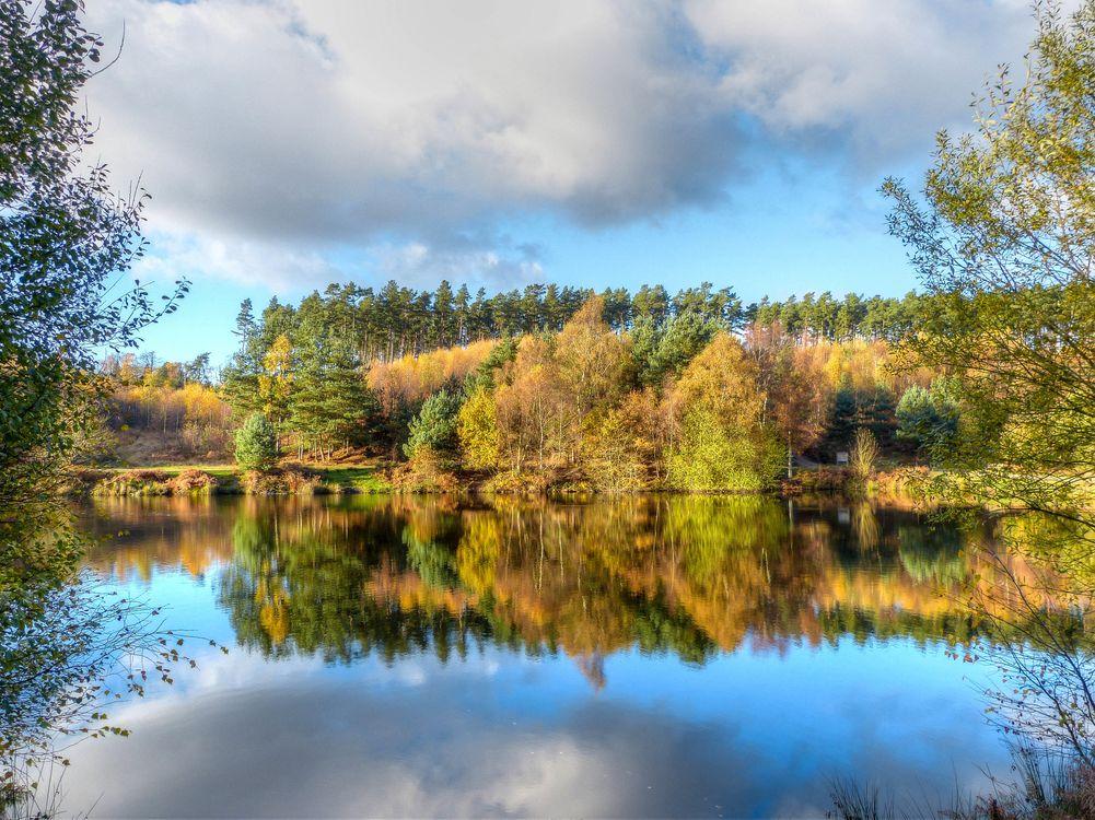 Фото бесплатно осень, водоём, озеро - на рабочий стол