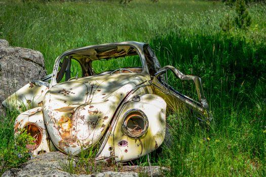 Photo free grass, car, Volkswagen