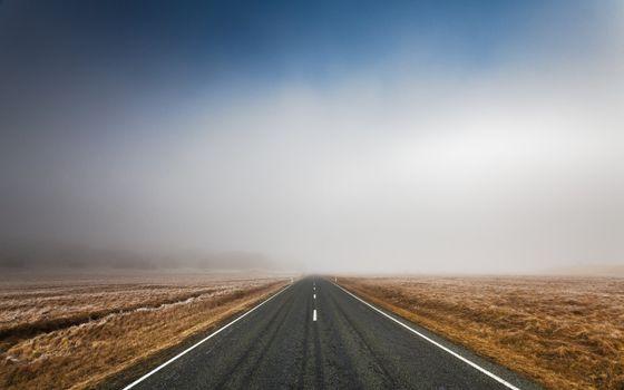 Photo free long road, field, clear skies