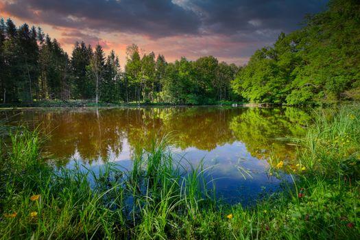 Фото бесплатно озеро, пруд, болото озеро