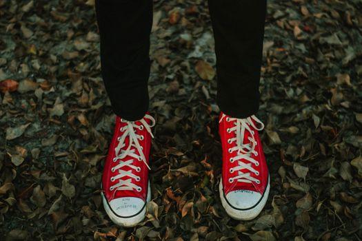 Фото бесплатно кеды, листья, ноги