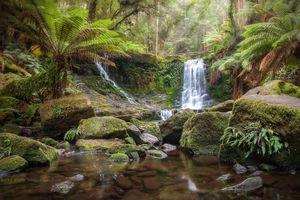 Фото бесплатно TASMANIA, AUSTRALIA, водопад