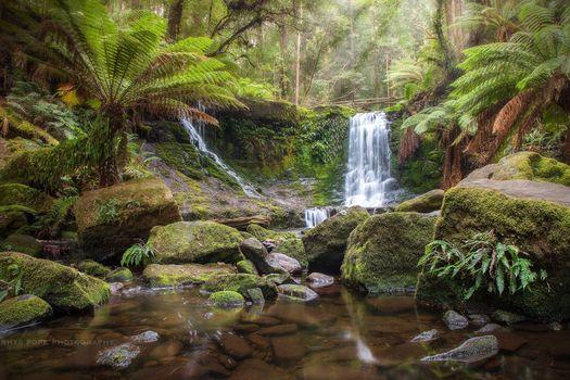 TASMANIA, AUSTRALIA, водопад, лес, камни