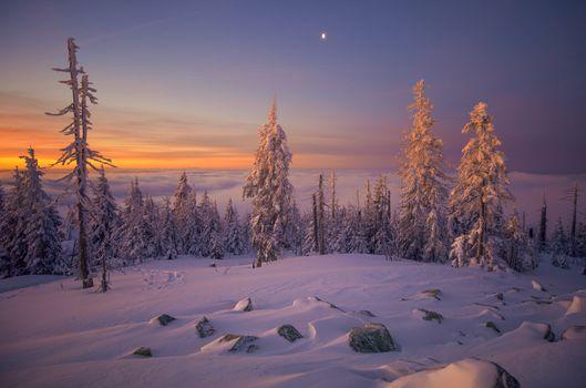 Фото бесплатно Бавария, зима, закат