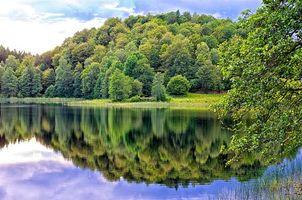 Бесплатные фото река,берег,лес,деревья,пейзаж