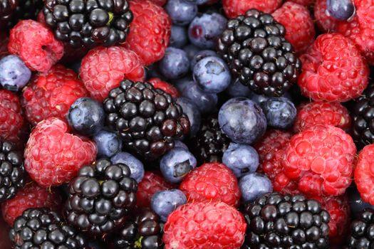 Photo free berries, BlackBerry, raspberry