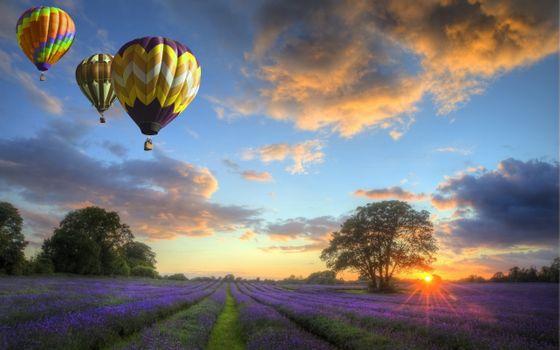 Photo free balloons, field, sunset